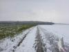 Wintermarathon 096