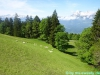 lgt-alpine-marathon101