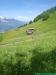 lgt-alpine-marathon106