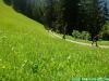 lgt-alpine-marathon110