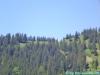 lgt-alpine-marathon151