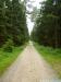 fichtelgebirgsmarathon80