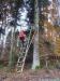 zeiler-waldmarathon37