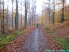 zeiler-waldmarathon59