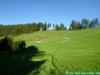 allgaeu-panorama-marathon028