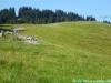 allgaeu-panorama-marathon042