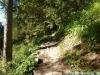 allgaeu-panorama-marathon059