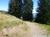 allgaeu-panorama-marathon077