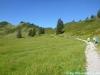 allgaeu-panorama-marathon094