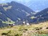 allgaeu-panorama-marathon098