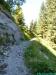 allgaeu-panorama-marathon113