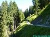 allgaeu-panorama-marathon114