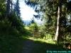 allgaeu-panorama-marathon115