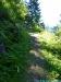 allgaeu-panorama-marathon116