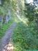allgaeu-panorama-marathon117