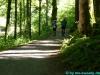 allgaeu-panorama-marathon155