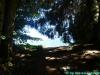 allgaeu-panorama-marathon175