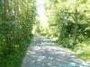allgaeu-panorama-marathon184