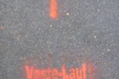 01.07.2012 - Vestelauf Coburg